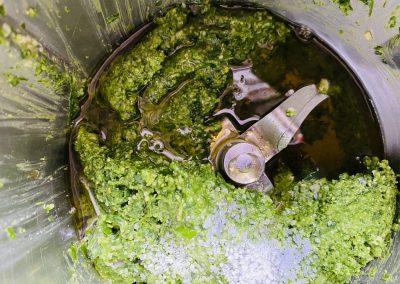 Bärlauchpesto mit Olivenöl